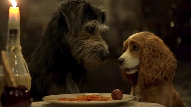 Disney+ movies - Lady & the Tramp