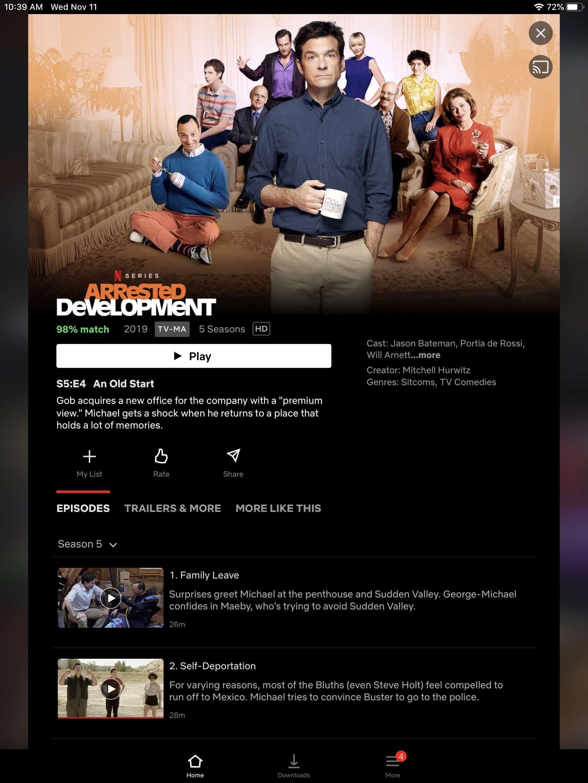 Netflix - iPad Show Screen