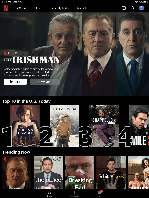 Netflix - iPad homepage